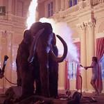 Бородач разгромил музей